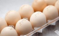 パック卵検知器