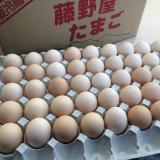 藤野屋商店_お歳暮たまご_10kg