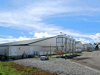 直営農場 株式会社 藤野屋ファーム(繁殖農場)