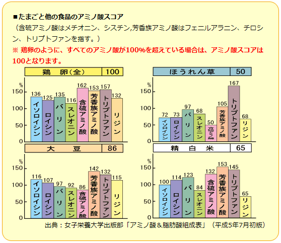 日本養鶏協会_アミノ酸_たまご